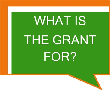 What Is The Grant For?